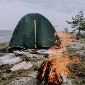 Lejrliv